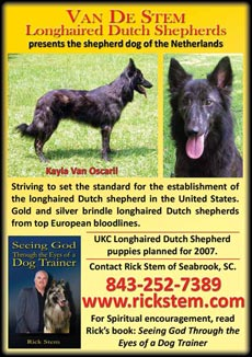 Rick Stem's Website: Professional Dog Training, Longhaired Dutch